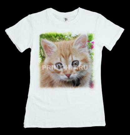 футболки с котиками 2