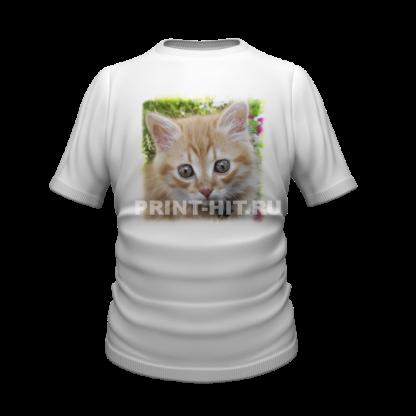 футболки с котиками